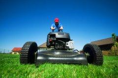 Gartenarbeiten & Grünflächenpflege
